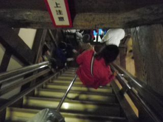 110430211 hikone castle.jpg