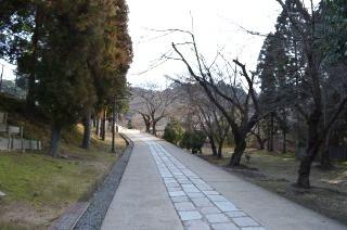 140210 3202S todaiji nigatsudo.jpg