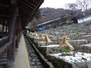 0403S 140208 hasedera temple.jpg
