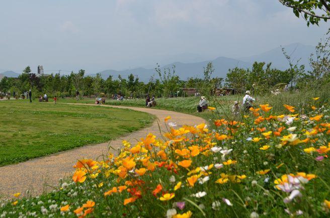 120526003 kana garden.jpg