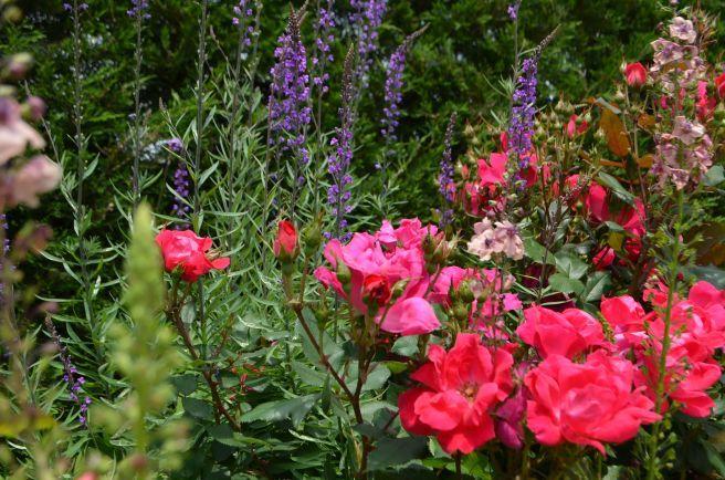 120526005 kana garden.jpg