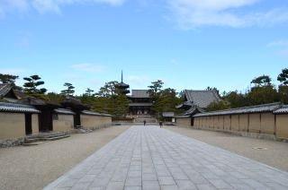 140209 2502S horyuji temple.jpg