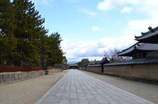 140209 2503S horyuji temple.jpg