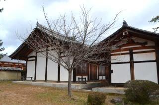 140209 2602S horyuji temple.jpg