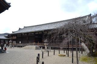 140209 2608S horyuji temple.jpg