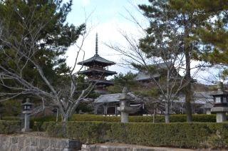 140209 2617S horyuji temple.jpg